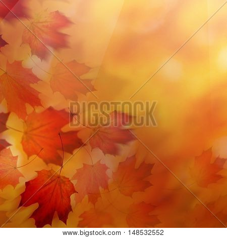 Abstract Autumn Background with Red Fall Leaves