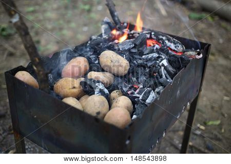 Closeup of brazier coal and baked potatoes