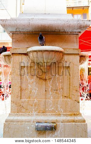 Romantic fountain with pigeons bathing. Nice, France