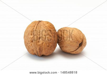 Walnuts isolated in white background, walnuts beans.