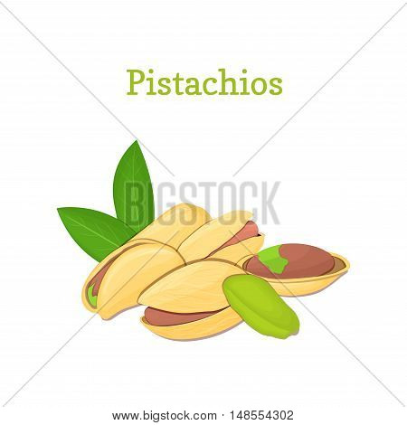 Pistachio nuts with leaves. Vector illustration of a handful of nuts isolated on white background it can be used as packaging design element, printing brochures on healthy and vegetarian diet