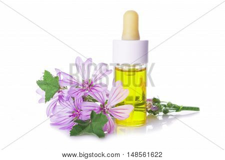Dropper Bottle With Mallow Malva Extract