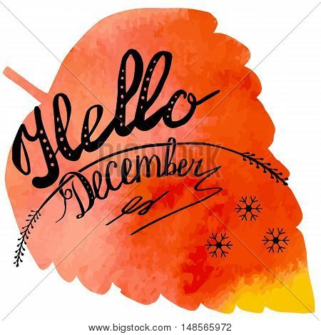 Hand written phrase Hello December on abstract hand painted watercolor texture in leaf. Colorful autumn foliage banner template with hand lettering isolated on white background. Vector illustration.