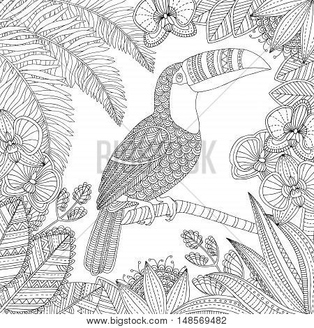 Vector hand drawn toucan bird tropical illustration for adult coloring book. Freehand sketch for adult anti stress coloring book page with doodle and zentangle elements.