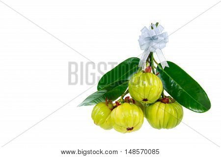 Bunch of garcinia cambogia fresh fruit with ribbon isolated on white. Garcinia atroviridis is a spice plants and high vitamin C and hydroxy citric acids (HCA) for diet and good health.