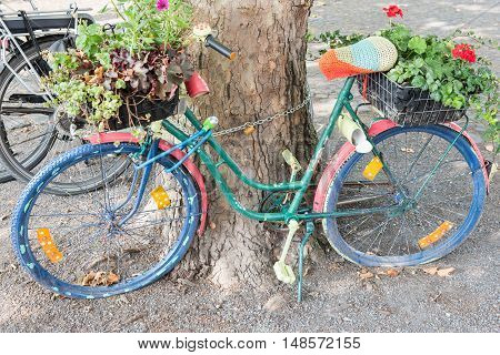 abandoned bycicle standing at a tree with baskets and flowers
