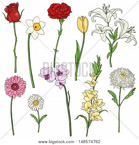 Vector Set Of Color Cartoon Flowers