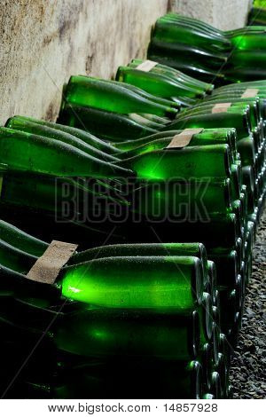 Wine Archive, Hort Winery, Znojmo - Dobsice, Czech Republic