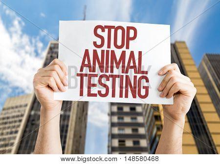 Stop Animal Testing placard