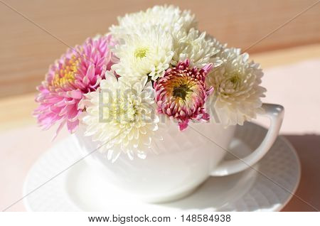 bouquet of white and rose chrysanthemums in a porcelain cup
