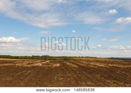 Cultivated field after harvesting under blue sky