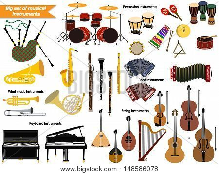 Big beautiful set of different musical instruments.