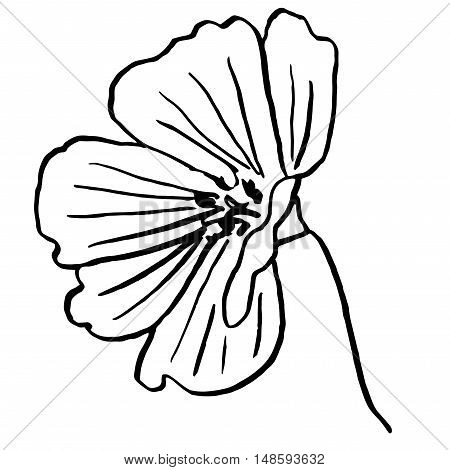 Flower doodle drawn in outline for coloring or other needs
