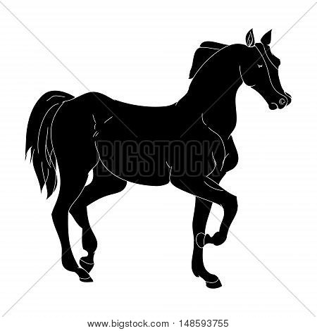 The horse goes trotting pony silhouette on white background vector illustration