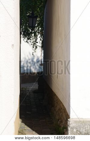 A narrow alley between two buildings to a backyard.
