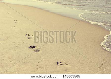 footprints on the sea beach, toned photo