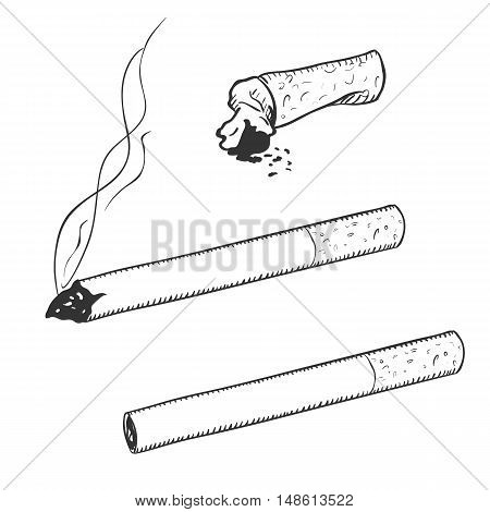 Vector Sketch Set Of Cigarettes With Filter