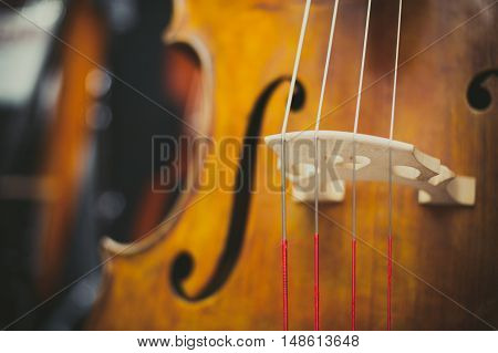 Double Bass Bridge And String Close Up