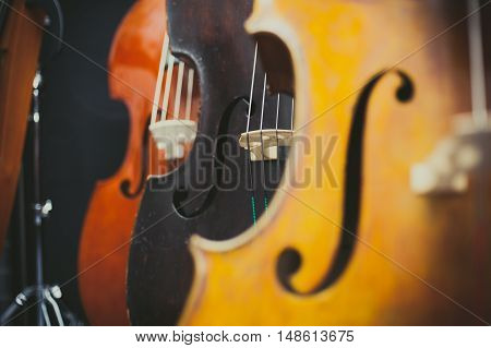 Black Double Bass Bridge And String Selective Focused