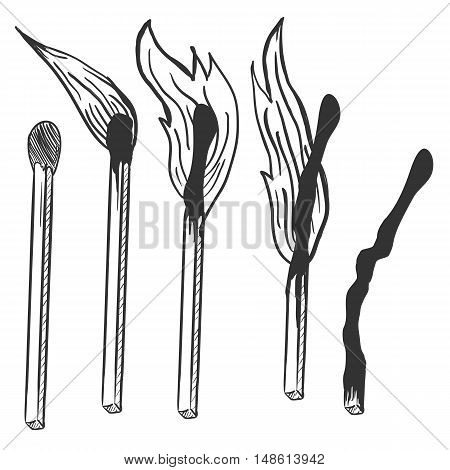 Vector Sketch Set Of Burning Matches. Different Stages Of Combustion