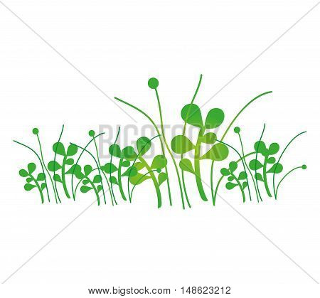 green grass plant growing nature. vector illustration