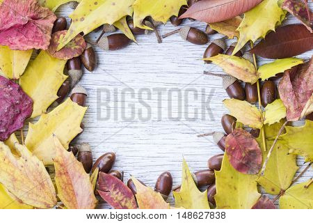 Circle frame of acorns and sutumn leaves on painted wood board