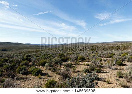 Green And Blue Landscape Of Tankwa Karoo