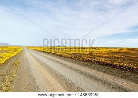 The Clouds The Roads Of Tankwa Karoo