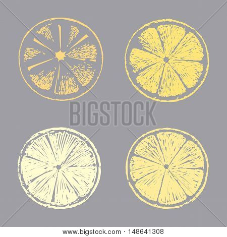 Abstract lemon slice Sketch hand drawn on gray background