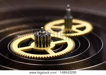 Gears and spring of hours close up