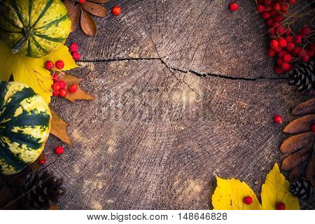 Autumn Background Gifts Nature Wood