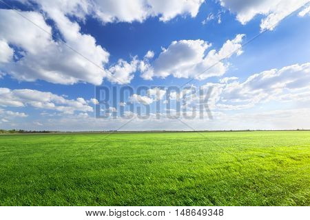 clouds over the field/ bright summer photo Ukraine