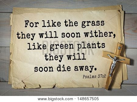 TOP-1000.  Bible verses from Psalms. For like the grass they will soon wither, like green plants they will soon die away.