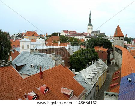 Rooftop View of Tallinn and the Famous St. Olaf's Church, Estonia