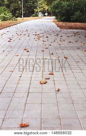 Urban stone paving perspective. Texture background selective focus