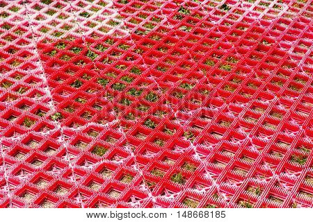 Background Red Plastic Road Grid With Sprouted Green Grass