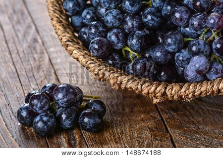 Bunch of black grapes in a wicker basket on a wooden table