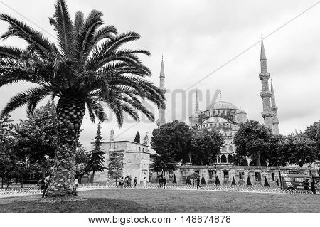 ISTANBUL TURKEY - MAY 20 2016 - Blue Mosque in Sultanahmet in Istanbul Turkey. Monochromatic picture. More than 32 million tourists visit Turkey each year.