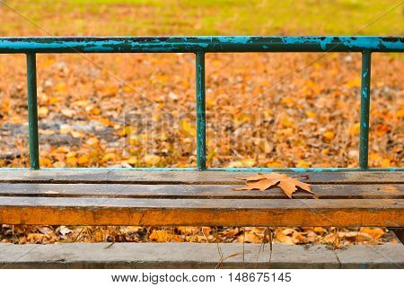 Yellow maple leaf on an old bench. Selective focus