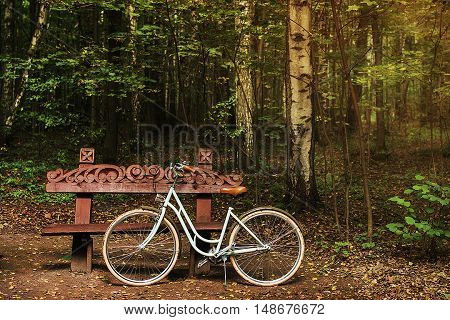 Bike near the wood bench in the autumn forest