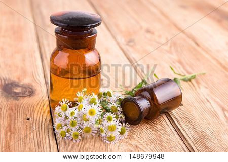 Fragrant Oil In A Glass Bottle With Camomile Flowers On Wooden Table