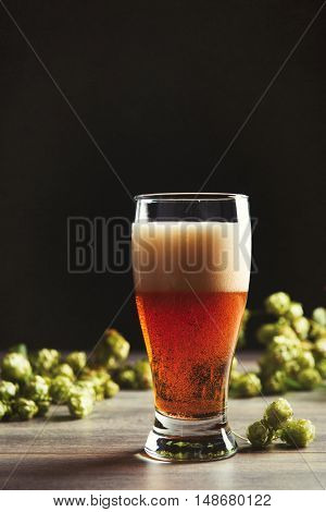 Pint of beer in a glass with hops in the background - plenty of copy space for text