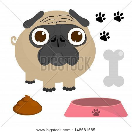Pug dog, Pug Puppy, Pug dog set isolated on a white background, Vector Illustration