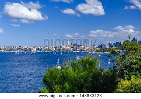 Sydney harbour: view from Taronga Zoo onto Rose Bay.