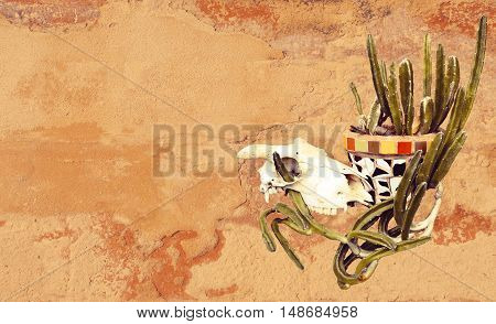 Sheep skull and Mexican mosaic pot plant with cactus on a rustic rendered wall background. Grungy textured image with copy space for text.
