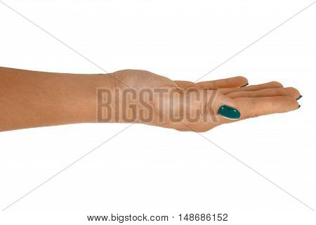 Palm up showing something middle-aged woman's skin cyan manicure. Isolated on white background.