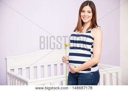 Beautiful Hispanic Pregnant Woman