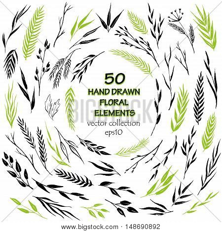 Vector collection of 50 hand drawn floral elements. Brush drawn branches, petals, herbs, twigs and leaves. Ink decorative elements for any design purpose.