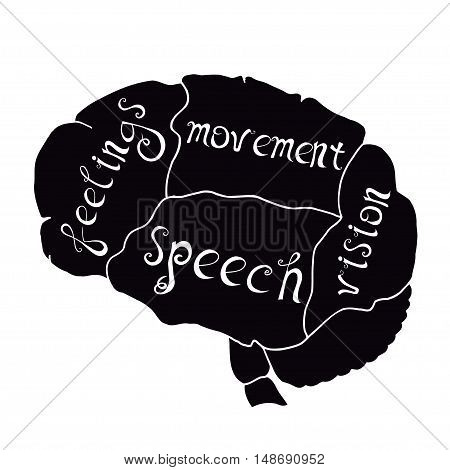 Parts of the human brain are responsible for feelings, speech, movement, hearing,. Vector illustration, handwritten letters