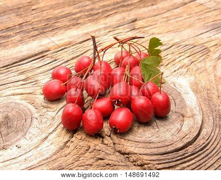 Hawthorn berries on wooden background in studio